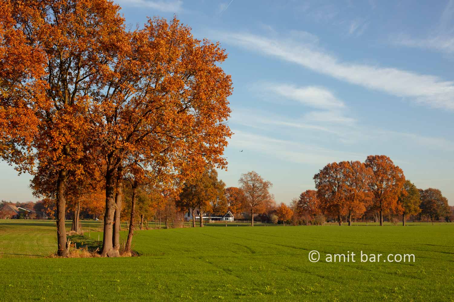 Autumn colors I: Autumn colors in the Achterhoek region, The Netherlands