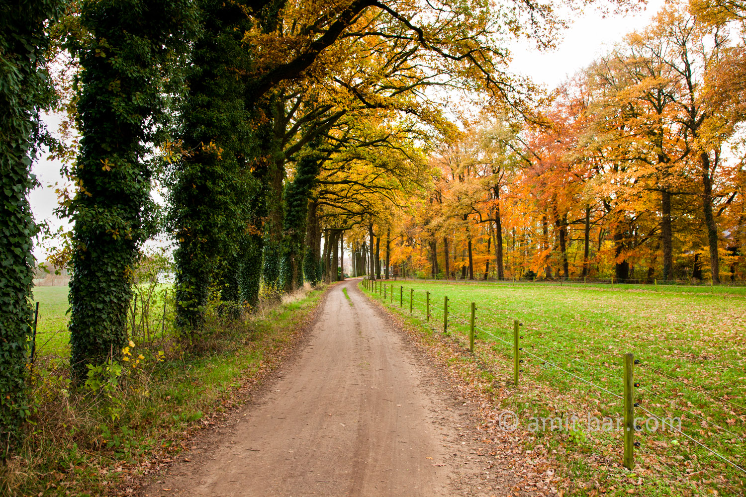Autumn landscape: Autumn landscape in Doetinchem, The Netherlands
