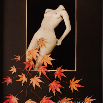 Autumn leaves with a nude model