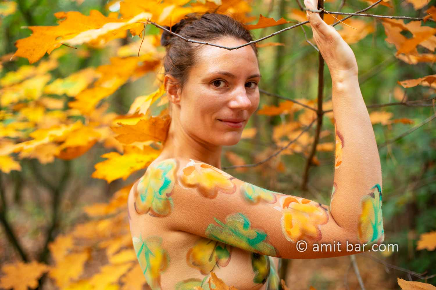 Body painted autumn leaves III: Autumn leaves painted on a model in the forest beside Doetinchem, The Netherlands