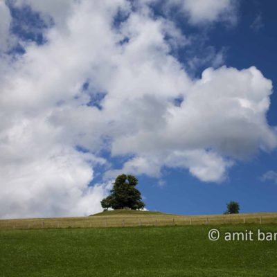 Clouds with tree