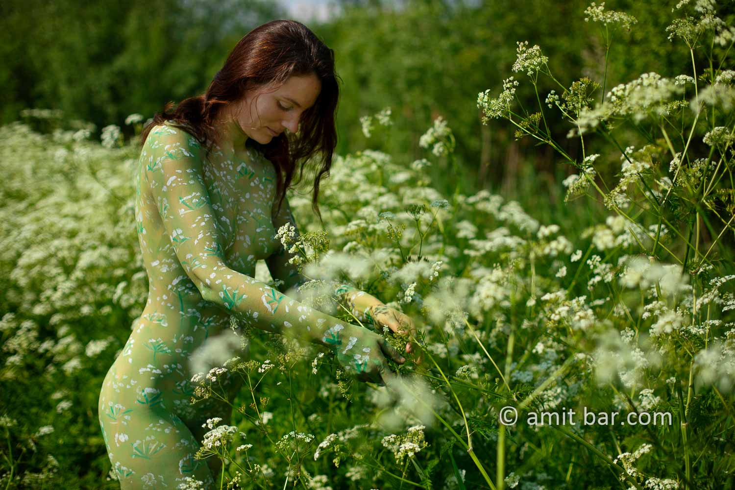 Cow parsley I: The wild plant Cow parsley inspired me to crate a body-painting on a sunny day besides my hometown.