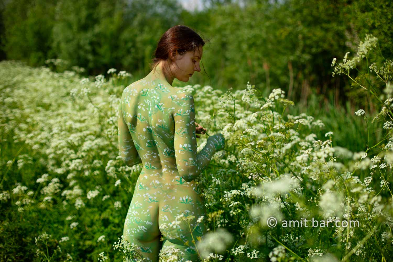 Cow parsley II: The wild plant Cow parsley inspired me to crate a body-painting on a sunny day besides my hometown.