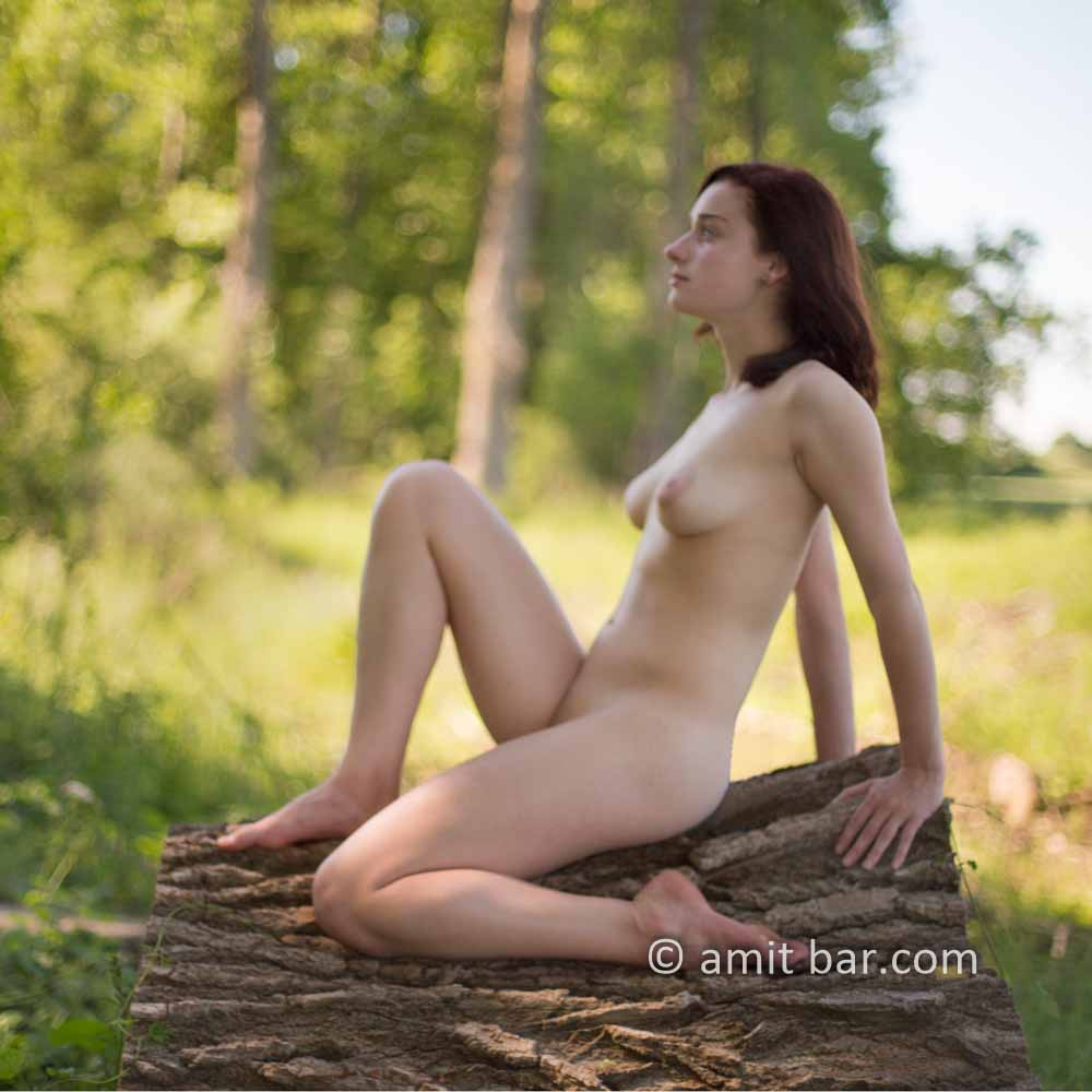 Nature girl I: Soft focus on a young model in nature reserve