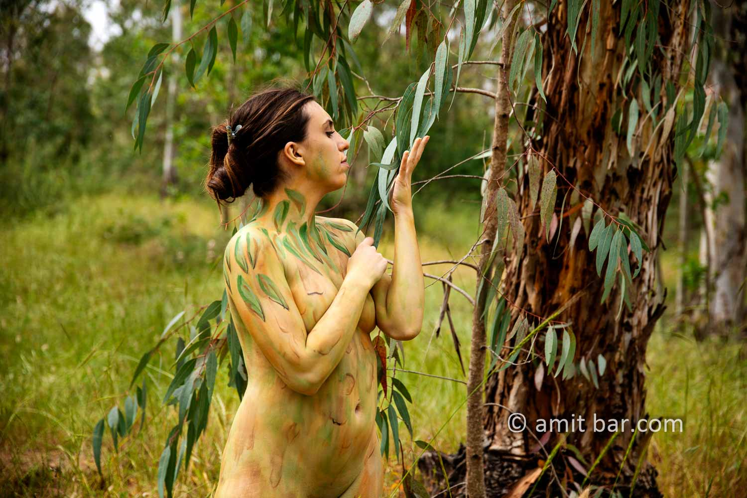 Eucalyptus grove I: Body-painted model in eucalyptus grove