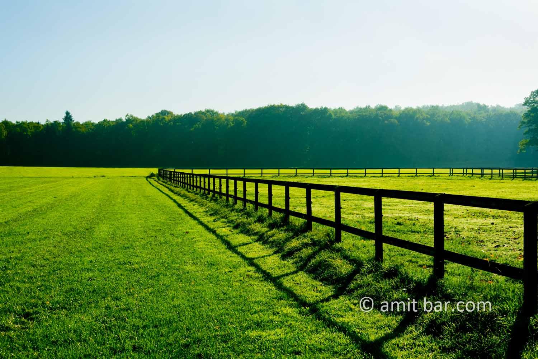Field fence: Field fence in Beek, The Netherlands