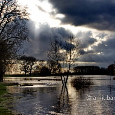 Flood on the IJssel river