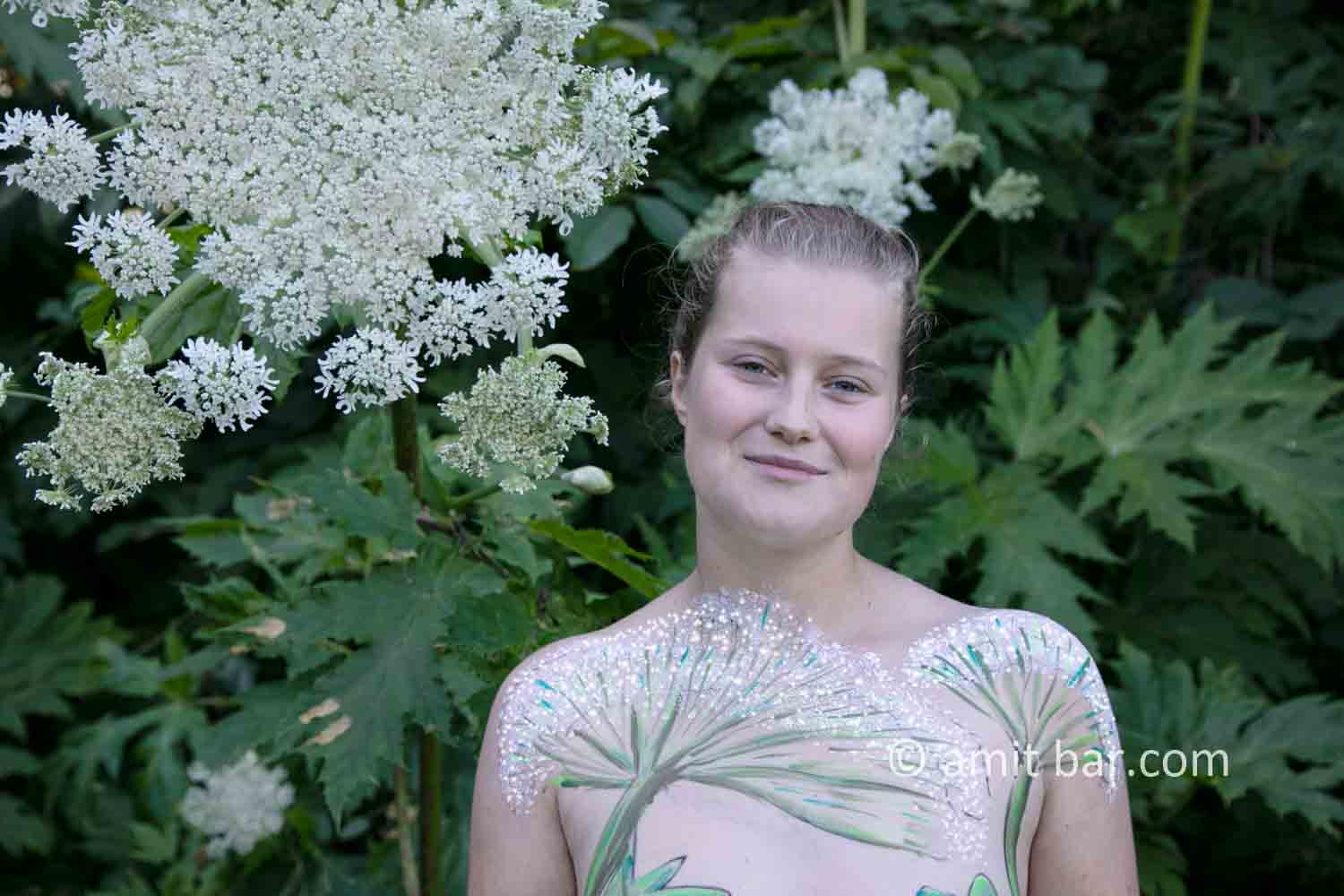 Hogweed plant portrait I: A Portrait of Shelly, who is walking along the beautiful Giant Hogweed plant