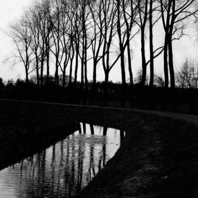 Lane reflection