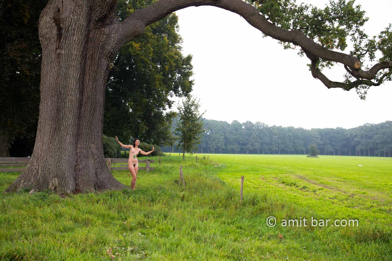 Pastoral Idyll II: A nude model is walking and dancing among the old oak and beech trees beside Ampsen castle, The Netherlands