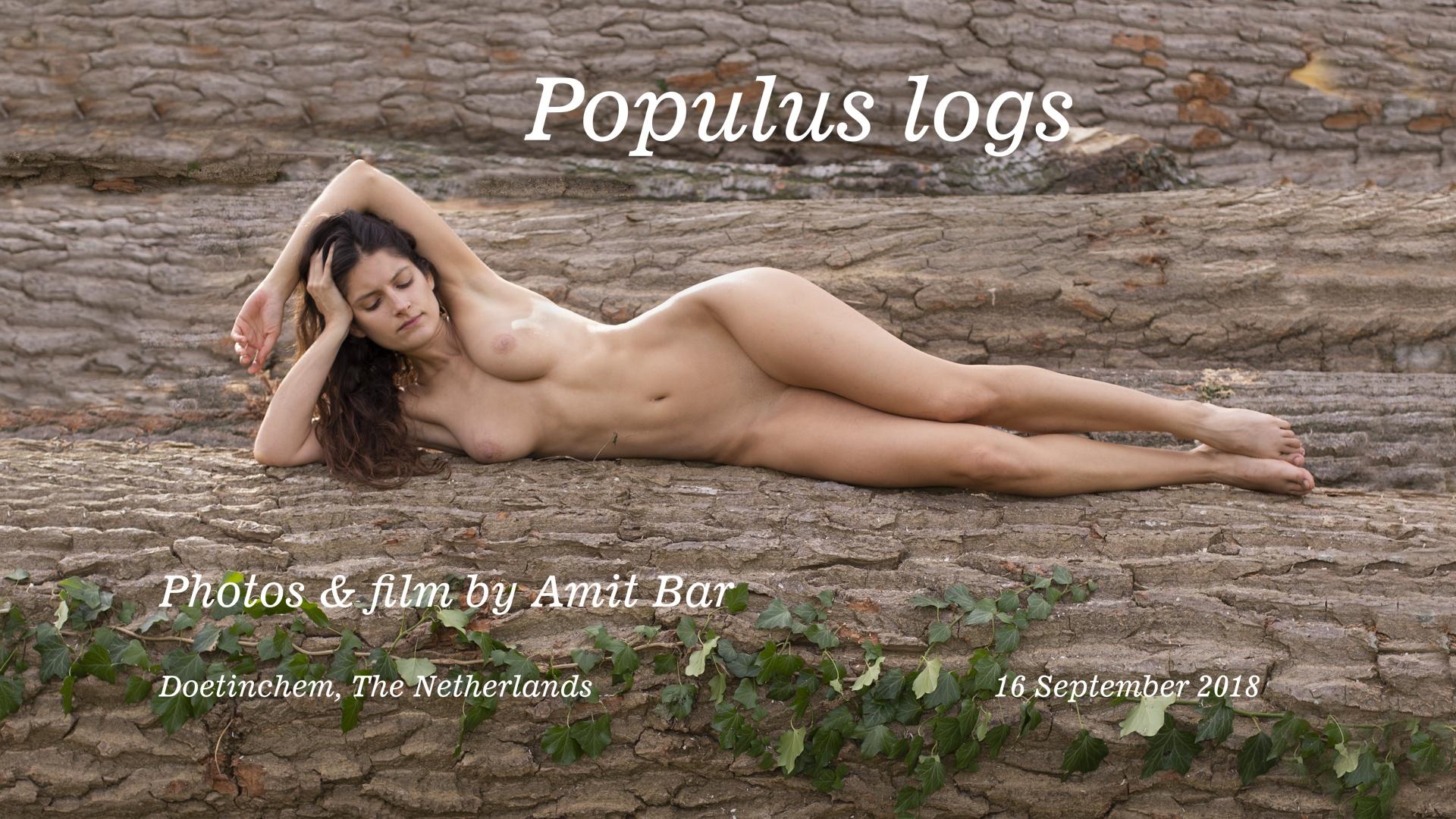 Populus logs video